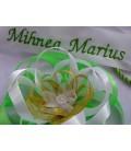 Cutie botez baieti catifea/verde  producator Atelierele Cris  240,00Lei